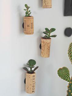 Video tutorial: Lav dine egne DIY køleskabsmagneter med sukkulenter og korkpropper! - DIY wine corks with succulents