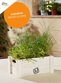 Grow your own herbs with Verdemax Easyorto Rocket & Chive grow kit!