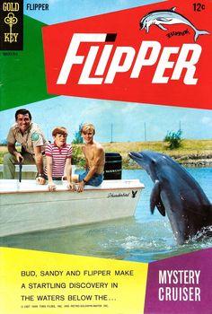 Flipper (1964 TV series) 1000 images about Luke Halpin on Pinterest Chuck connors Career