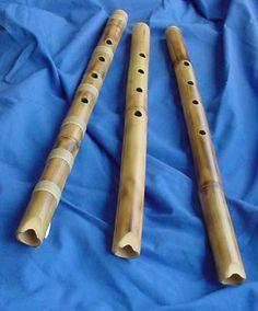 "Shakuhachi (尺八) is a Japanese flute which is end-blown and held vertically like a recorder instead of being held transversely like the familiar Western transverse flute. A recorder player blows into a duct, also called ""fipple,"" and thus has little or no control over the tuned pitch. The shakuhachi player blows as one would blow across the top of an empty bottle, but the opposite edge of the shakuhachi has a sharp edge, allowing the player substantial pitch control."