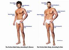 Der perfekte männliche Körper aus Frauen- und aus Männersicht.