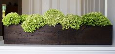 DIY~ Easy Rustic Planter Box - Perfect for table in front of window. It will be too heavy for my cats to push off! Planter Box Centerpiece, Diy Planter Box, Centerpieces, Rustic Planters, Diy Planters, Decorative Planters, Plant Box, Flower Boxes, Decoration