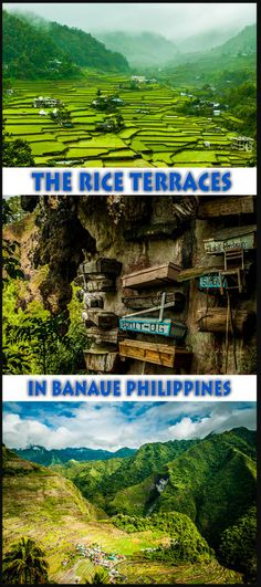 Read all about Hiking the Rice Terraces in Banaue Philippines #philippines #Banaue #hiking