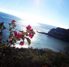 Pirates Cove near Avila Beach, CA