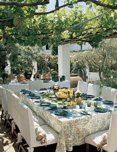 perfect setting: grapevine-covered pergola