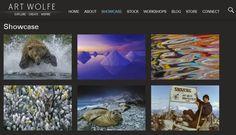 Art Wolfe Showcase