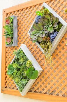 Awesome Succulent Garden Ideas For 2018 10 Succulent Rock Garden, Succulent Outdoor, Succulent Wall Art, Succulent Landscaping, Succulent Gardening, Succulent Care, Planting Succulents, Succulent Plants, Kalanchoe Blossfeldiana