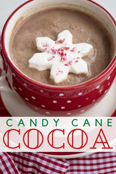 Candy Cane Hot Chocolate Cocoa, perfect recipe for your hot chocolate cocoa bombs! Best Christmas Recipes, Christmas Desserts, Alcohol Recipes, Drink Recipes, Beverage Center, Friend Recipe, Cocktails, Breakfast Casserole Easy, Peppermint Mocha