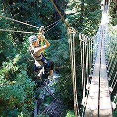 Felton, CA day trip: You can experience Felton's redwoods up close by zipline through Redwood Canopy Tours. >> This would be fun!