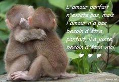 L'Amour parfait...