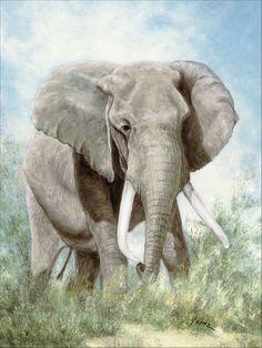 A. Heins: Elefant #wandbild #homedecor #einrichtung #walldecor #wallpicture #poster #africa #africanprint #africanart Elephant Poster, Canvas Art, Canvas Prints, Vinyl, Wildlife, African, Animals, Products, Elephants