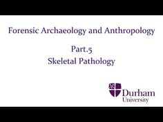 Forensic Archaeology and Anthropology - Part.5: Skeletal Pathology - YouTube
