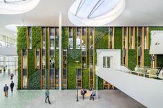 Liander - Duiven, The Netherlands - Fokkema & Partners Architecten - Living wall