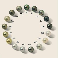 Tahitian pearls colour chart  #tahiti #pearls #genisi.com  #Regram via @genisipearls