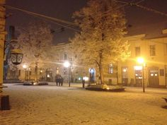 Charming February snowing in the Museum Square in Cluj-Napoca! - 22Rey.com  #Cluj2015 #ShareCluj #Cluj #MuseumSquare February, Museum, Heart, Winter, Outdoor, Night, Winter Time, Outdoors, Outdoor Living