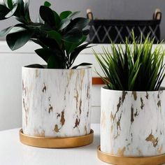 Marble Design White Pot with Gold Tray Nordic Home Decor - 632138445363 For Sale, Buy from Vases & Decorative Pots collection at MyDeal for best discounts. Flower Vases, Flower Pots, Large Ceramic Planters, Vintage Canisters, Contemporary Vases, White Pot, Nordic Home, Elegant Home Decor, Glass Birds