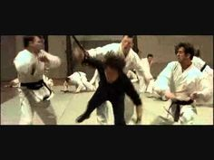 tony jaa and jet li mashup. lots of great fight choreography eye candy for fans who like both
