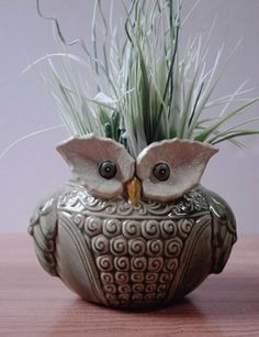 Amazon.com - Delightful Ceramic 'Wise Old Owl' Vase or Planter for Indoor or Outdoors