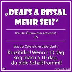 Humor, True Stories, Austria, I Laughed, Fun Facts, Haha, Singing, Language, Jokes