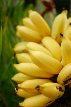 Baby banana I loved