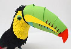 Pine – Paper Birds