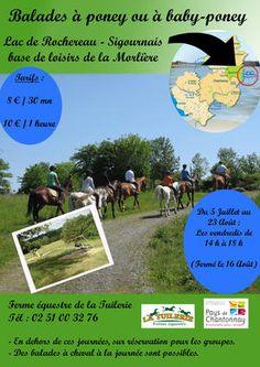 Balade à poney ou à baby-poney. Du 5 juillet au 23 août 2013 à Sigournais.