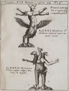 Ulisse Aldrovandi: Monstrorum historia (1642)