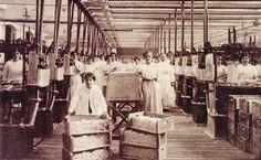 Hoofdstuk 4. Van 'unvollkommene Waare' tot kwaliteitsprodukt. De ontwikkeling van de kaarsindustrie in Nederland, 1800-1880.