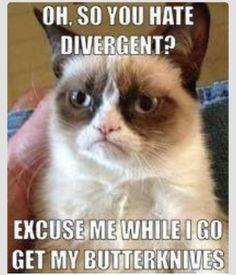 #grumpycatlikesdivergent