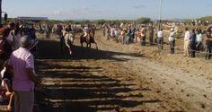 Corrida de Cavalos encerra festas na vila de Aguçadoura