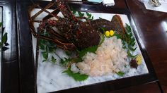 [I ate] Lobster Sashimi (Fukuoka Japan) http://ift.tt/2j16v7W #TimBeta