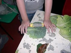 Cabbage leaves and clay make beautiful bowls, plaques and plates. Wonderful results for any age.