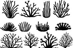 Hand Drawn Corals On White. Silhouette Icons Stock Vector - Illustration of collection, anemone: 57394511 Arte Coral, Coral Art, Coral Drawing, Doodle Drawing, Sea Drawing, Ocean Themes, Free Vector Art, The Little Mermaid, Royalty Free Images