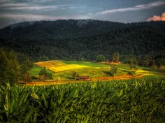 Sunset Field by dbnunley, via Flickr