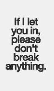 Like my heart. Or my trust. Or my fridge. Don't you dare break my fridge or I will break your face