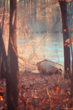 Lake boat water outdoors trees autumn lake,i just love lakes Autumn Lake, Soft Autumn, Late Autumn, All Nature, Belle Photo, Scenery, Beautiful Pictures, In This Moment, Seasons