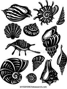 seashell pyrography designs - Google Search