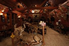 This is what my husband would want to do with the bonus room. Deer Hunting Decor, Deer Decor, Hunting Cabin, Deer Camp, Hunting Tips, Rustic Man Cave, Taxidermy Decor, Deer Mounts, Gun Rooms