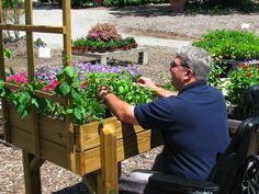 Wheelchair Accessible Gardening | Poor as Folk