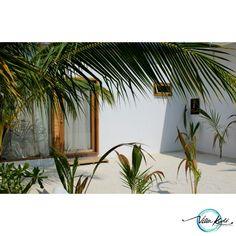 Palms garden and fantastic wood window door handmade in Villa Kudí Maldives villakudi@gmail.com
