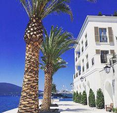 Porto Montenegro Karte.45 Best Porto Montenegro Images Beautiful Places Destinations