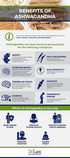 Adrenal fatigue sufferers may find benefits of Ashwagandha to be useful in supporting the immune system and regaining optimal body function.