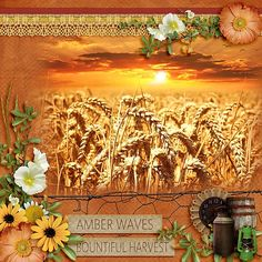 Amber Waves by Aimee Harrison http://www.gottapixel.net/store/product.php?productid=10029709&cat&page=1  https://www.digitalscrapbookingstudio.com/personal-use/bundled-deals/amber-waves-collection/