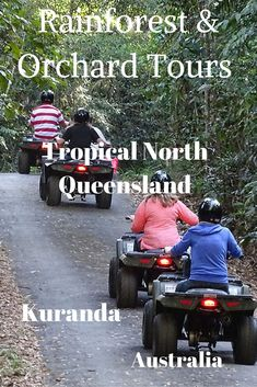 The aim of the Rainforest & Orchard Tours in Kuranda is to introduce you to the rainforest environment of Tropical North Queensland, Australia: