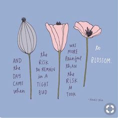 Take the risk. Blooming awaits. #Regram via @dr.rachellalan