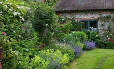 A quintessential English cottage garden brings to mind romantic planting, billowing with old-fashioned favourites. Find out how to achieve this look, wherever you live