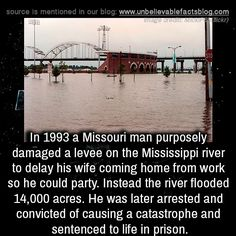 in 1993 a Missouri man purposely damaged a levee on the Mississippi river to delay his wife coming home from work so he could party. Instead the river flooded acres. He was later arrested and convicted of causing a catastrophe and sentenced to. Bizarre Facts, Weird Facts, Fun Facts, Strange Facts, Bermuda Triangle, Unbelievable Facts, Coming Home, Missouri, Sentences