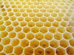 Bees initially make circular cells and use their body heat to turn the wax into a viscous liquid. Then the surface tension at the 3-point junctions pulls the wax into a hexagonal shape.