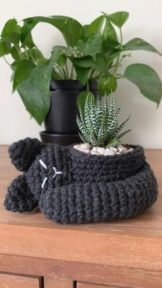 Adorn your plants in a cat cozy that resembles your favorite furry feline! This pattern includes a guide for cat customizations and instructions for two finished sizes to fit small plants Crochet Cat Pattern, Crochet Toys Patterns, Cute Crochet, Crochet Dolls, Small Crochet Gifts, Crochet Plant Hanger, Crochet Planter Cover, Crochet Home Decor, Crochet Animals
