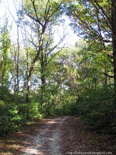 The Sag Valley Trail in Cap Sauers Holdings  Nature Preserve west of Palos Park, Illinois.